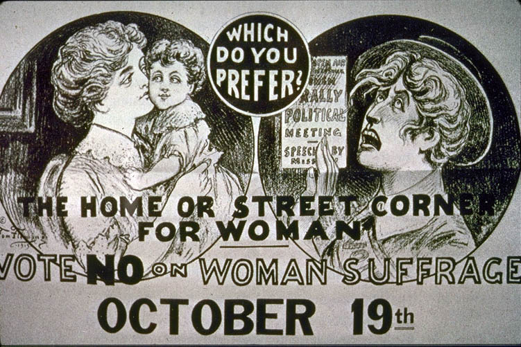 chartism women s suffrage and national political The national federation of women workers the conservatism of the british labour movement problems for working-class women the women's social and political union the road to the cul-de-sac sylvia pankhurst the impact of the russian revolution british women gain the vote in conclusion.